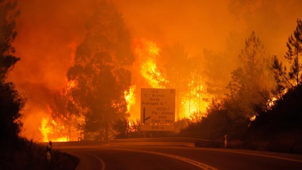 Aumenta a 64 el numero de fallecidos tras voraz incendio en Portugal