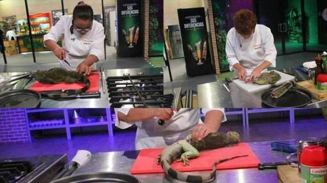 Ministra Lina Pohl califica de terrible que en programa de televisión maten iguanas