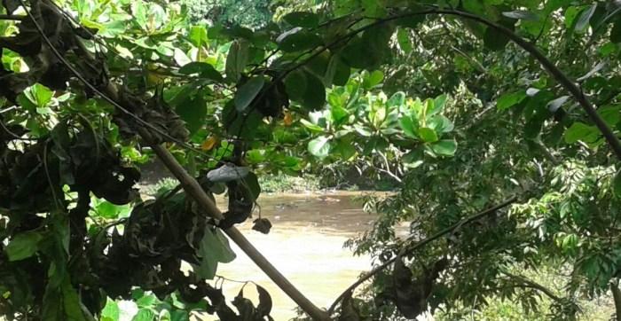 Localizan cadáver de un hombre flotando en el Río Grande en San Miguel