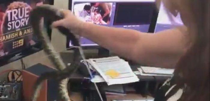 Periodista es sorprendida por un intruso que se coló en su sala de redacción