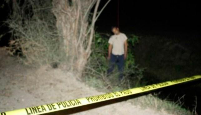 Joven se suicida, colgándose de un árbol cercano a su vivienda en Nueva Esparta, La Unión