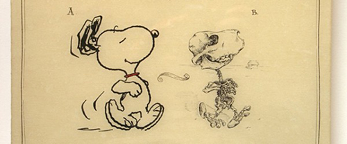 Snoopy from Charlie Brown's humorous skeleton frame