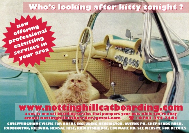 Notting Hill Cat Boarding A6 silk flyers printed by Solopress