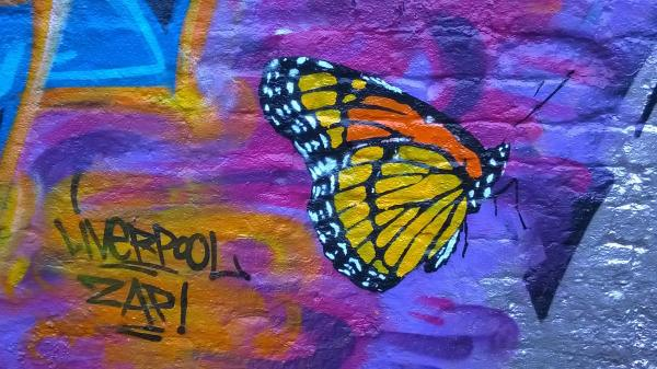 Some of David's other work, featuring a vivid butterfly stencil.
