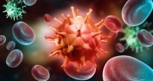 curar sida con sangre de cordón