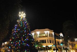 Punta Gorda, Fla., 2010 Christmas Tree