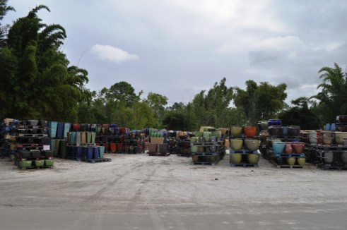 Just a Sampling of Planters at Pottery Express, Punta Gorda, Fla.