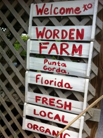 Worden Farm in Punta Gorda, Florida. Fresh. Local. Organic.