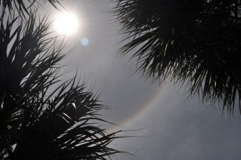 Ice Crystals Cause the 22º Sun Halo, Port Charlotte, Fla., June 4, 2012
