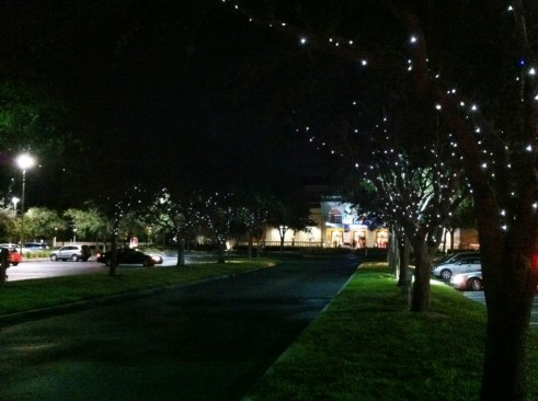 Lighted Trees Guide the Way to the Mertz Theater, Sarasota, Fla.