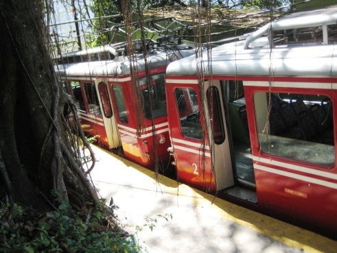 Take the Corcovado Railway Up the Mountain and Through Tijuca National Park, Rio de Janeiro, Brazil