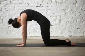 Mal de dos Yoga posture dos rond