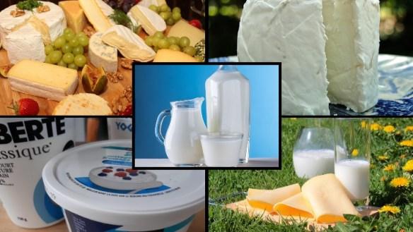 produits laitiers solutionskadia.com