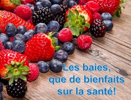 Les baies et leurs excellentes vertus sur la santé. www.solutionskadia.com