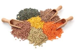 L'apport calorique et nutritionnel des lentilles. Variété de lentilles