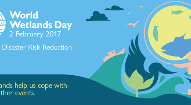 World Wetlands Day 2018 – Theme for World Wetland Day