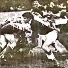 Domenico Piunti