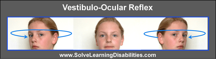 Image result for Vestibulo ocular reflex