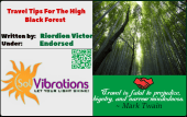 Travel Tips For The High Black Forest