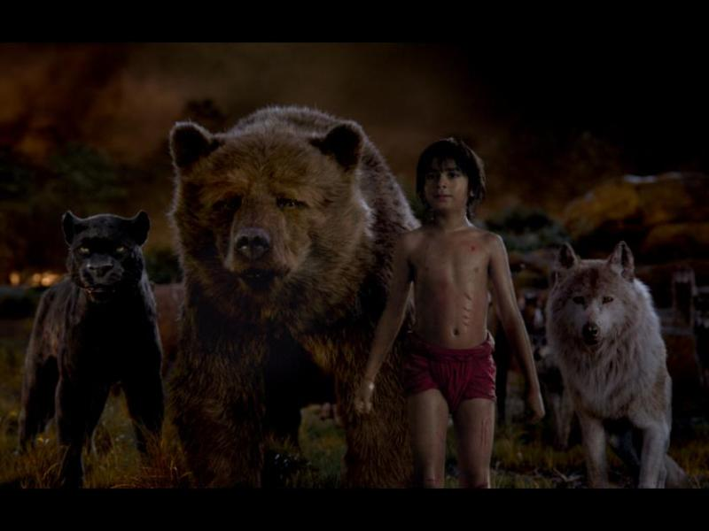 Bagheera, Baloo, Mowgli, and Raksha in Walt Disney Pictures' The Jungle Book.