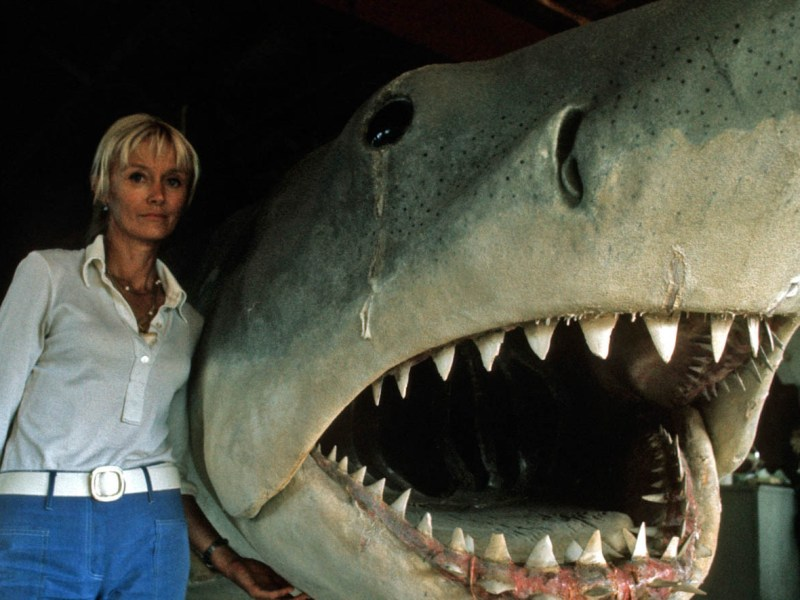 Valerie Taylor and Bruce in a still from Playing with Sharks
