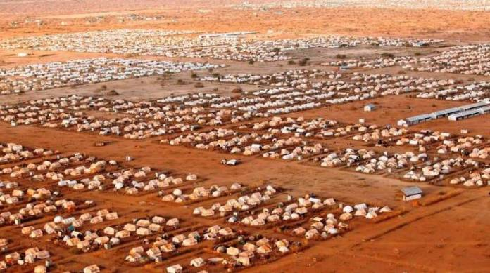 A look at global changes in refugee policies through the lens of Dadaab