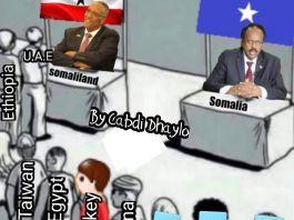Somaliland office to open soon: MOFA