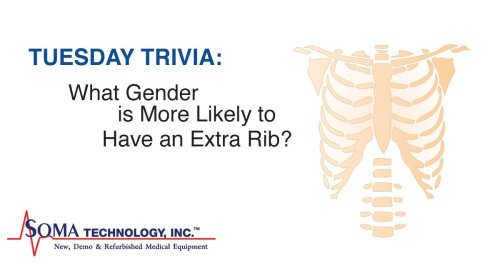 Gender Has Extra Rib
