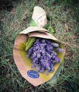 Букет цвећа лаванде
