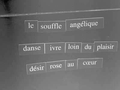 haiku 001