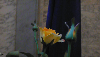 orange-bleue-691.jpg