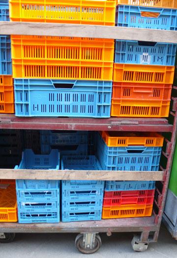 orange-bleue-jour-128.jpg