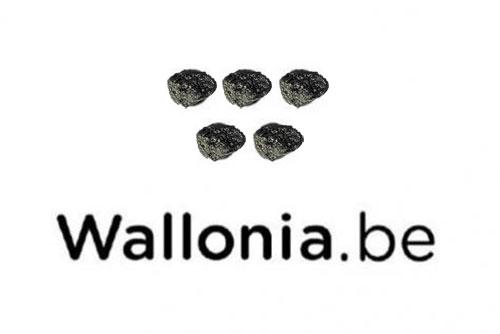 logo-wallonia