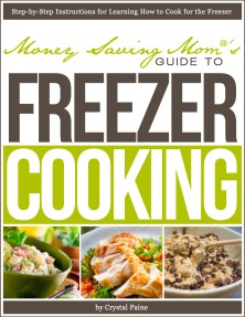Money Saving Mom's Guide to Freezer Cooking