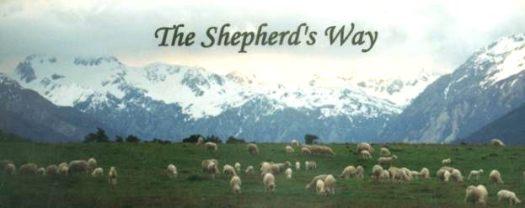 shepherd-1