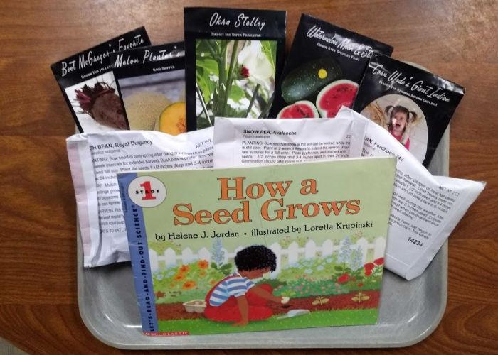 Vegetable Gardens and Seed Exploration #NatureBookClub #NatureStudy