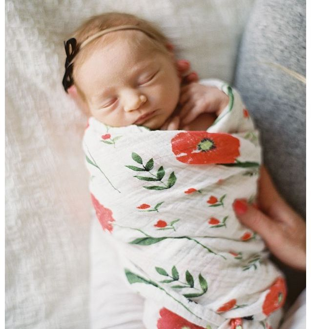 Welcome Baby June, the Newest Addition to the SVR Team!