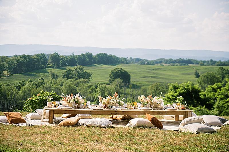vineyard_wedding_rentals_virginia_0480.jpg