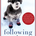 Following Atticus: Life Lessons Learned While Hiking With a Dog