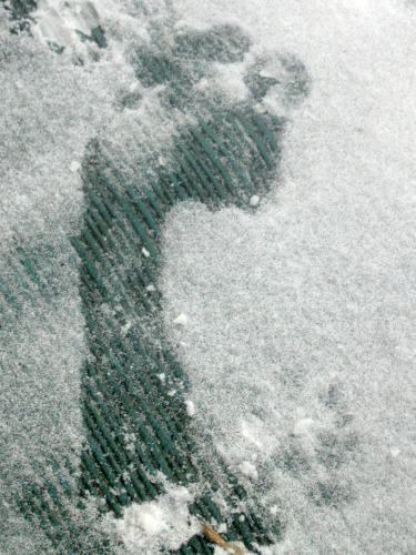 Bare human foot print in the snow.