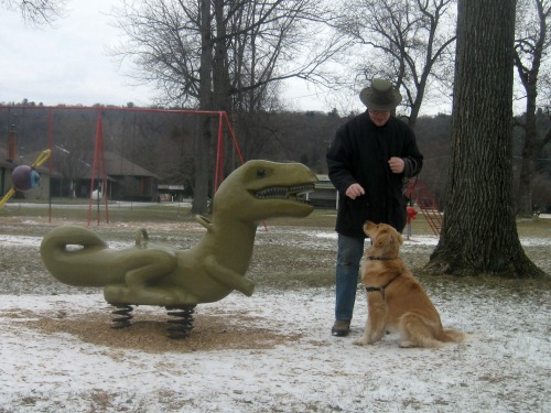 Honey the golden retriever with a dinosaur in the park.