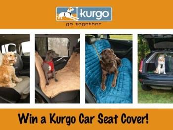 Win a Kurgo car seat cover.