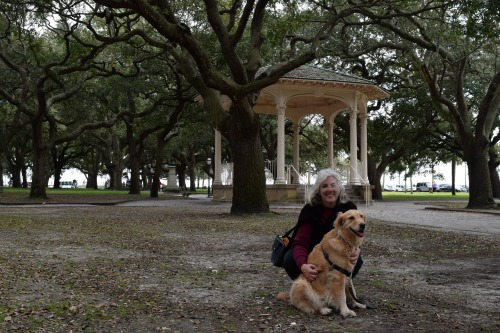 Honey the golden retriever and Pam in White Point Garden in Charleston.