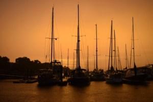 View of masts in orange sky.