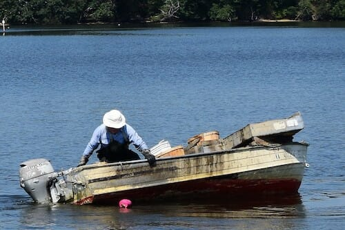Working a crab trap on the Great Wicomico River.