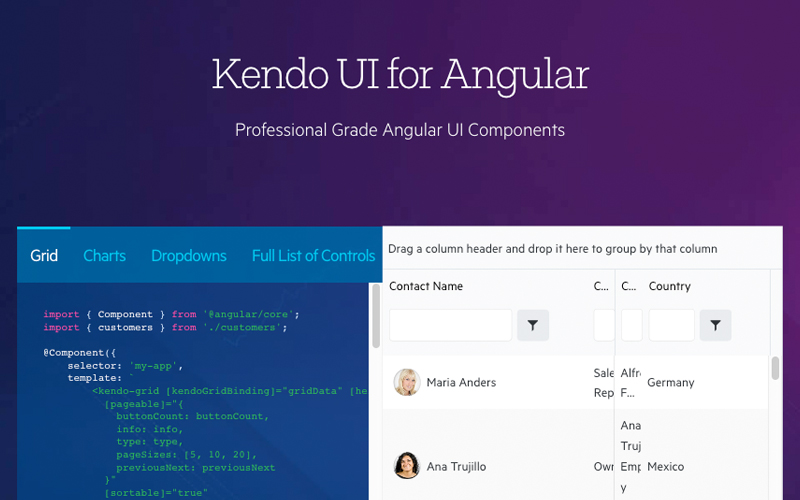 Kendo Ui For Angular
