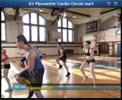 Plyometric Cardio Circuit Videos