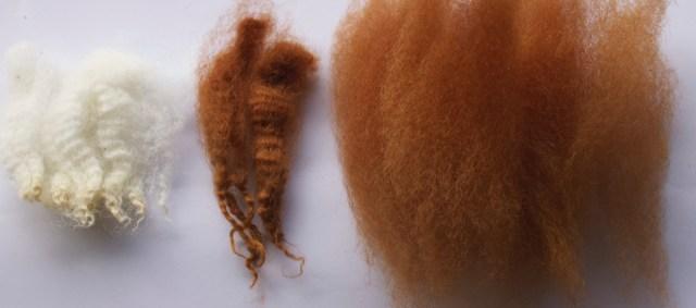 チェビオットのマツゲ苔染