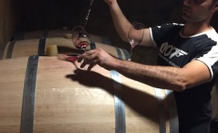 How Long to Age Barolo Wine?   SommelierQA.com