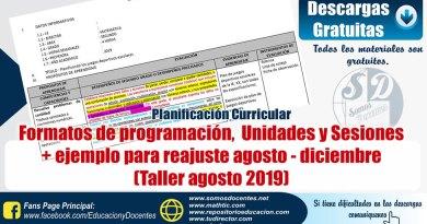 Formatos y ejemplo de programación anual, unidades y sesiones, [Taller agosto 2019], para realizar reajustes en nuestra planificación, secundaria